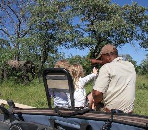 Children with tracker on safari